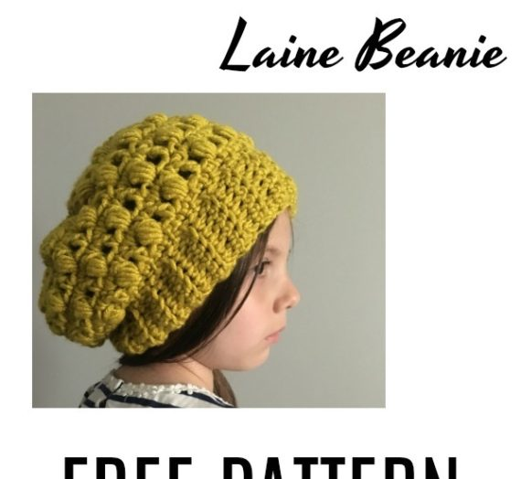 30 Days of Beanies! Learn how to make the Laine Puff Stitch Beanie with this FREE Pattern!